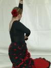 Flamenco_3